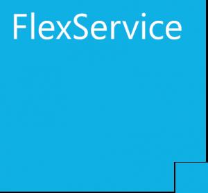 Flexservice partner keesing technologies